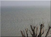 TR2135 : The sea at Folkestone by David Howard