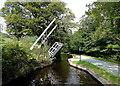 SJ2242 : Llanddyn No 2 lift bridge east of Llangollen by Roger  Kidd