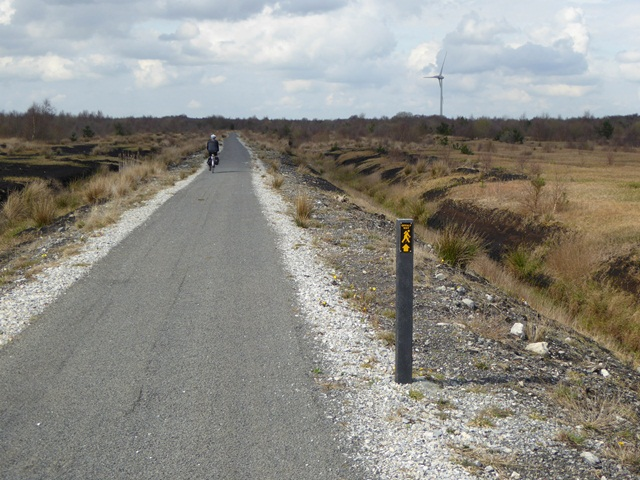 Cycle path in the Lough Boora Discovery Park