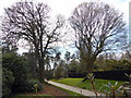 TQ2629 : Nymans Gardens by PAUL FARMER