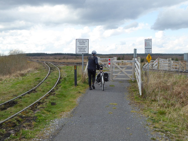 Level crossing in the Lough Boora Discovery Park