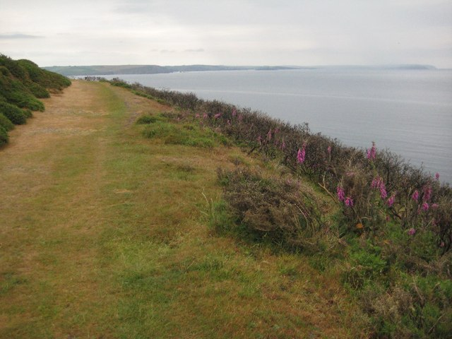 The coast path on Stoke Down