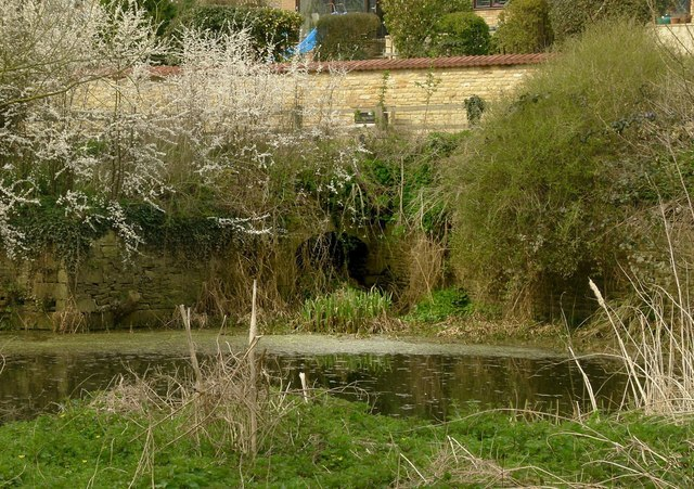 Barrowden Mill site, tailrace pond