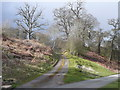 SJ2106 : Driveway into a private area, Powis Castle by Humphrey Bolton