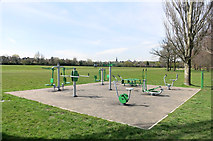 TQ2688 : Exercise in the Park by Des Blenkinsopp