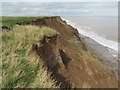 TA2539 : Crumbling cliffs, Aldbrough by Paul Harrop