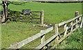 J5077 : Wooden fences, Conlig (April 2016) by Albert Bridge