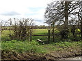 TM1353 : Footpath to Bull's Road & Rectory Road by Adrian Cable