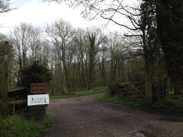 Footpath to Bull's Road & entrance to Oakwood Cottage