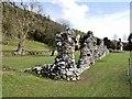 SO0571 : Ruined Walls, Cwmhir Abbey (Abaty Cwm Hir) by David Dixon