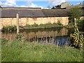 TL2545 : Pond at Manor Farm, Eyeworth by Dave Thompson