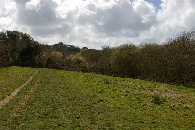Track along the Loe Valley, between Degibna and Lower Nansloe