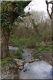 SW6525 : Brook dropping into the Loe Valley, between Degibna and Lower Nansloe by Christopher Hilton
