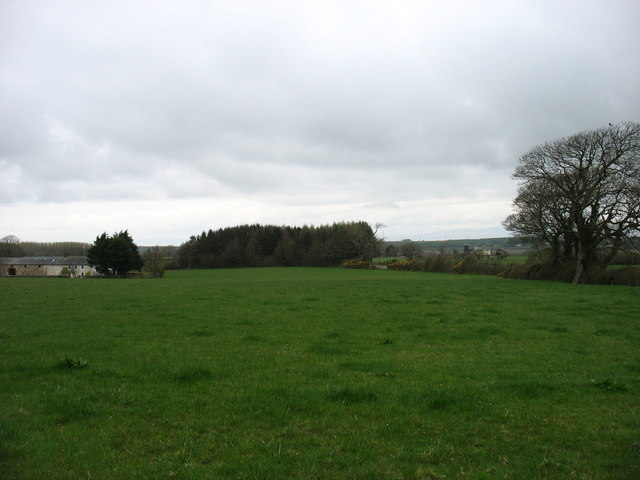 Fields at Grange Farm