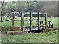 SK1350 : Lambs and footbridge by Ian Calderwood