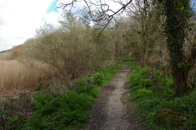 Path along the Loe towards Degibna
