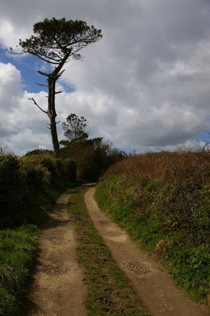 Lane along Carminowe Creek