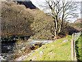 SN9264 : Afon Elan (River Elan) by David Dixon