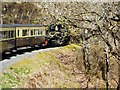 SN7377 : A Curve on the Vale of Rheidol Railway, near to Devil's Bridge by David Dixon