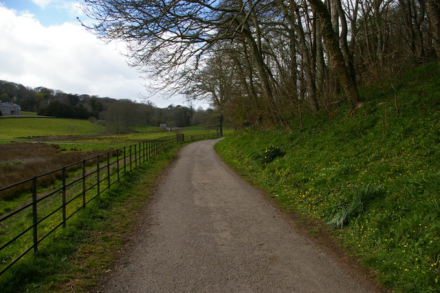 Track around the Loe at Penrose