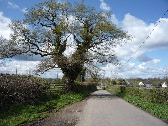 Longford Lane