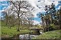 ST6604 : Minterne Gardens by Eugene Birchall