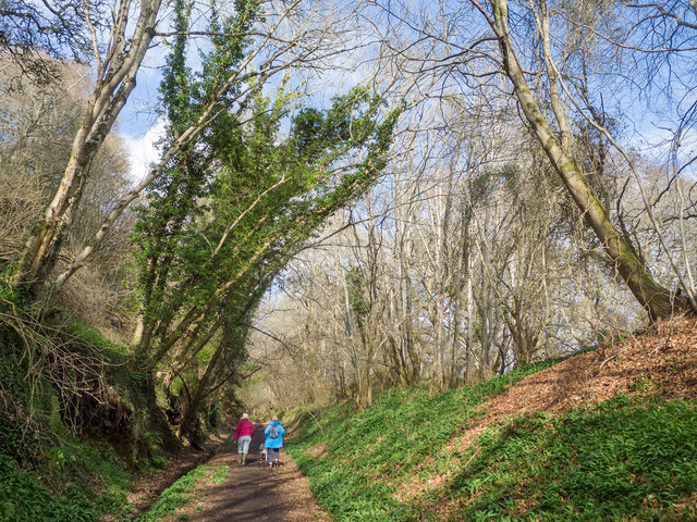 Walking the old railway line from Avoch towards Fortrose