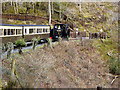 SN7178 : Vale of Rheidol Railway Passing a Foot Crossing by David Dixon