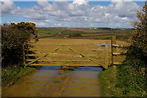 SW6523 : View off the track from Chyvarloe to Loe Bar by Christopher Hilton