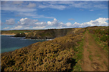 SW6521 : South West Coast Path along Halzephron Cliff by Christopher Hilton