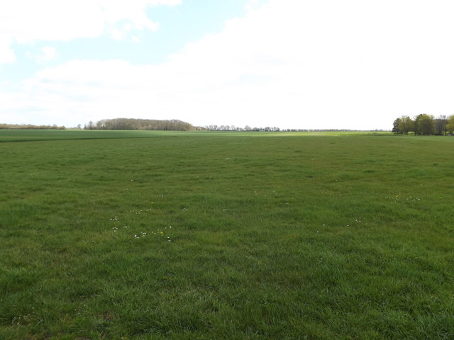 Fields off the entrance to Home Farm