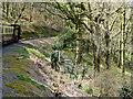 SN6878 : Vale of Rheidol Railway near Abernant by David Dixon