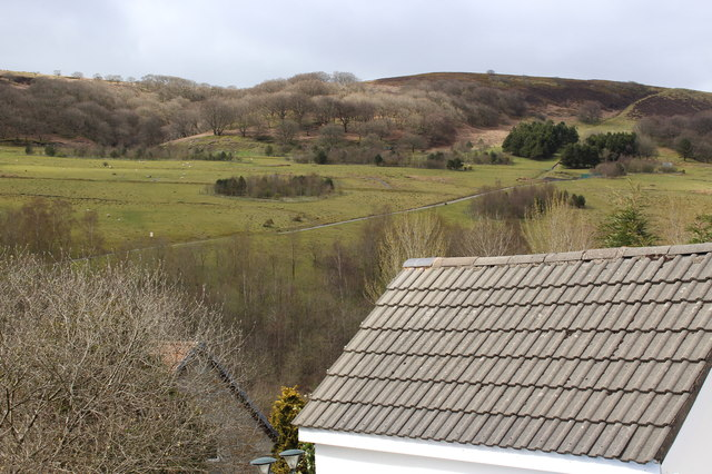 Lower slope, Mynydd James, Cwm Tyleri