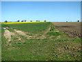 TG0530 : Footpath through crop fields by Evelyn Simak