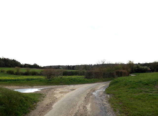 The Hollows & footpath