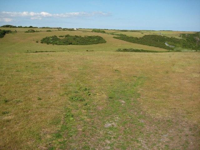 Grassland above Starehole Bottom