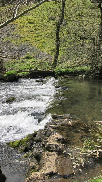 One of many man-made fish weirs on the River Dove