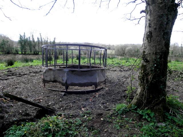 Animal feeder, Killycurragh