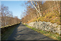 NY4814 : The Haweswater Road below Guerness Wood by Trevor Littlewood
