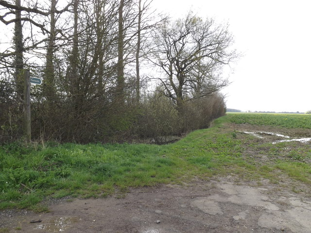Footpath to Bull's Road & Main Road
