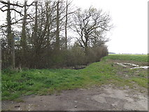 TM1453 : Footpath to Bull's Road & Main Road by Adrian Cable