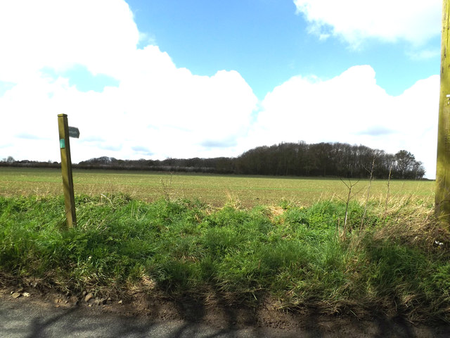 Footpath to Bull's Road