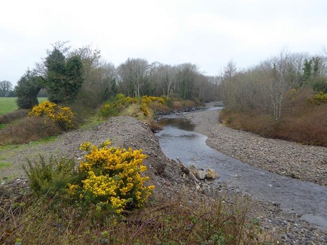 River Barrow at Rathcoffey Bridge