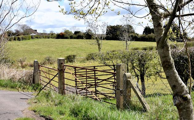 Field gates, Saintfield (April 2016)