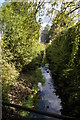 TQ3568 : Tributary of the Chaffinch Brook, leaving Elmers End Recreation Ground by Christopher Hilton