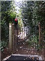SO8483 : Kinver Footpath by Gordon Griffiths