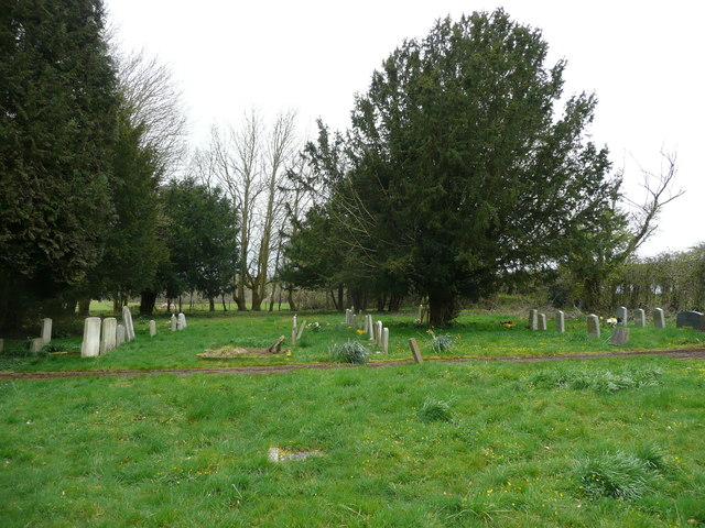 Yew trees in the cemetery, Mottisfont
