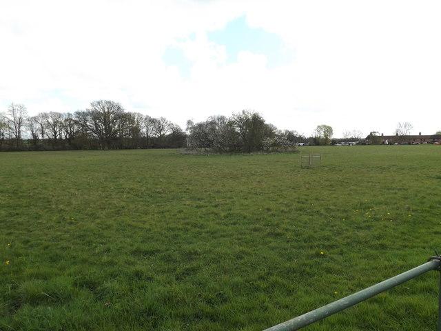 Barham Common
