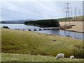 SE0018 : Baitings Reservoir and Viaduct  (Long Causeway) by David Dixon