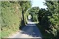 TR2548 : Long Lane by N Chadwick